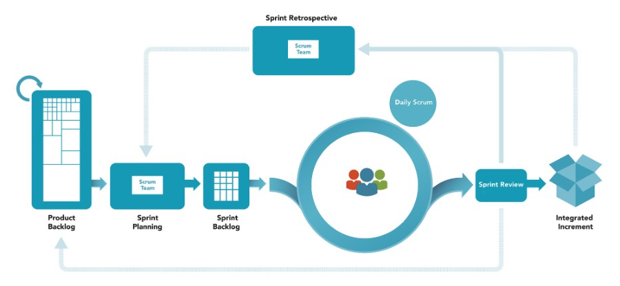 What is Agile SCRUM and why we use it | TMS